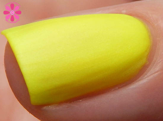 Mentality Nail Polish Neon Mattes Collection Expunge Swatch macro