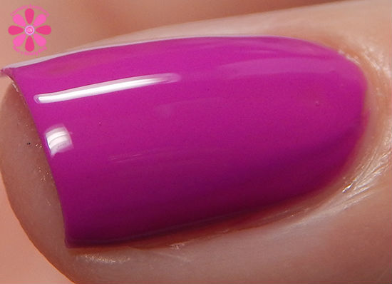 Zinc Industries macro top coat