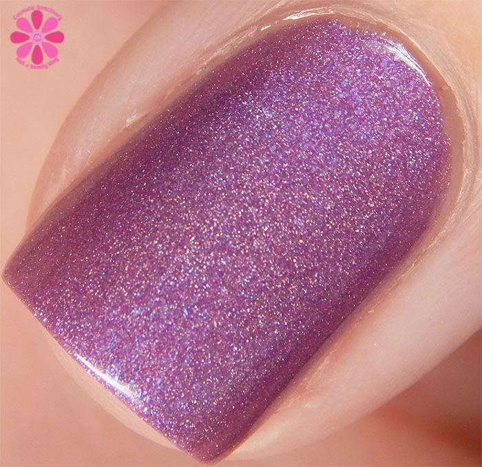 Purplexed Macro