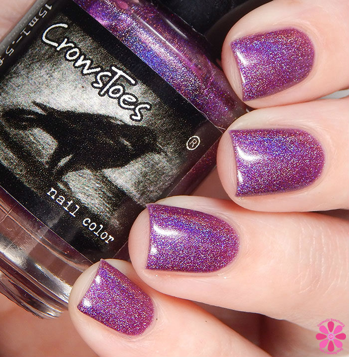 CrowsToes Nail Color Winter 2015 The Holographic Principle ...
