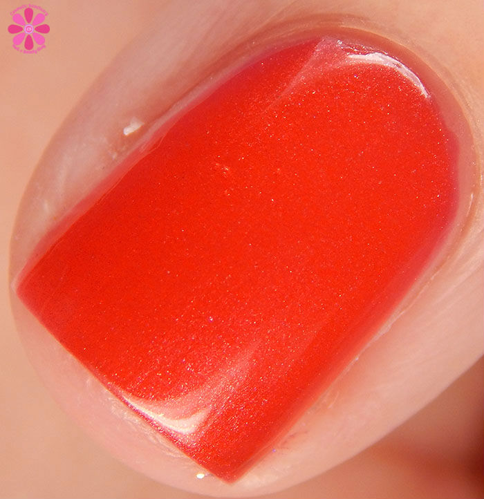China Glaze Holiday 2015 Cheers Collection Son Of A Nutcracker Swatch Macro