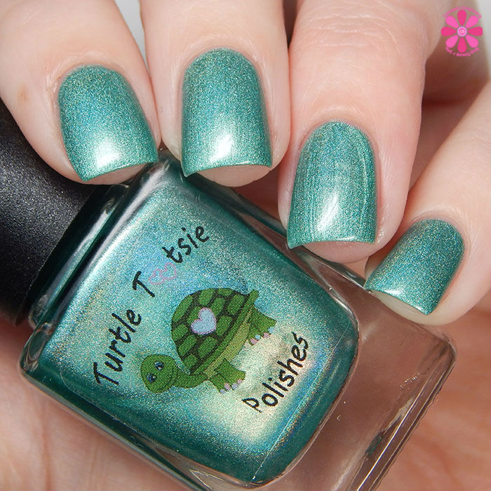 Holo Day Pine Up