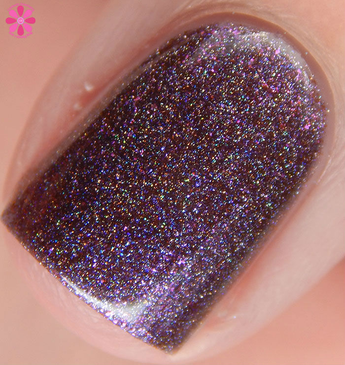 Lilypad Lacquer The Fashionista Collection Edgy Swatch Macro