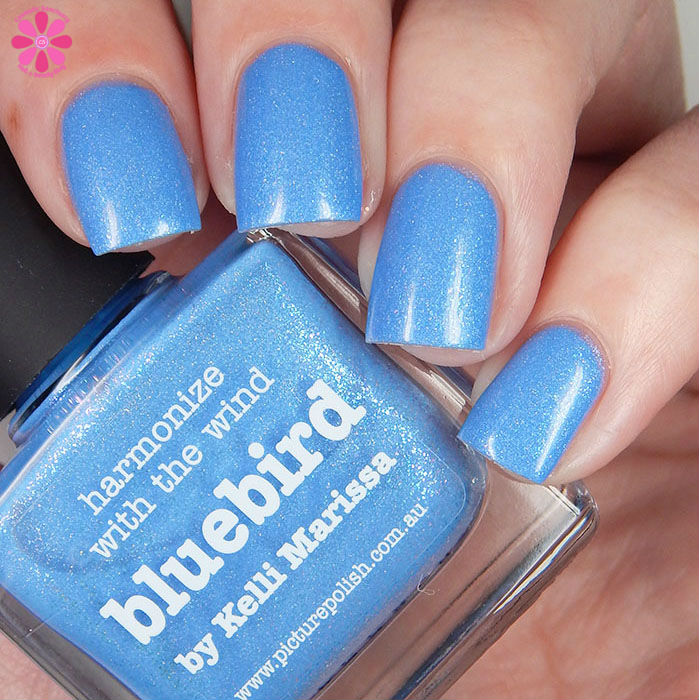 Bluebird Up