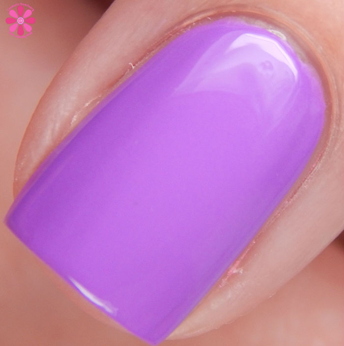 Salon Perfect Summer 2016 Neon POP! Collection Purple POP! Macro