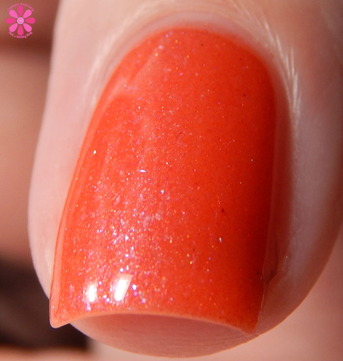 Joy Lacquer Coral Fixation Front