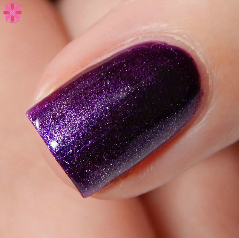 dollish polish zombieland rules of survival collection swatches review