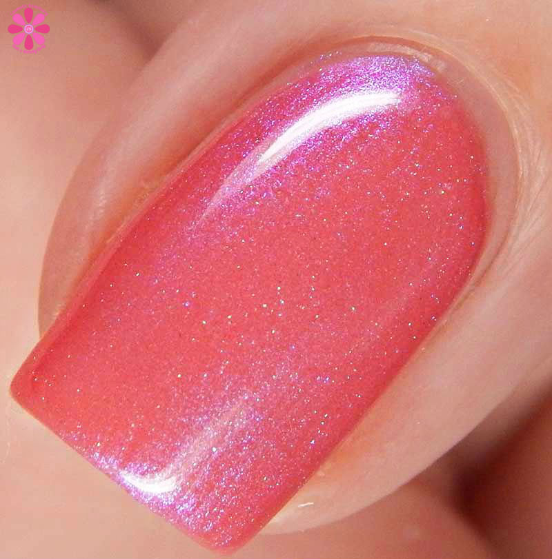 Blush Lacquers Beach Hunny Collection Swatches Amp Review