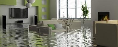 Water Damage Restoration, Butte, MT