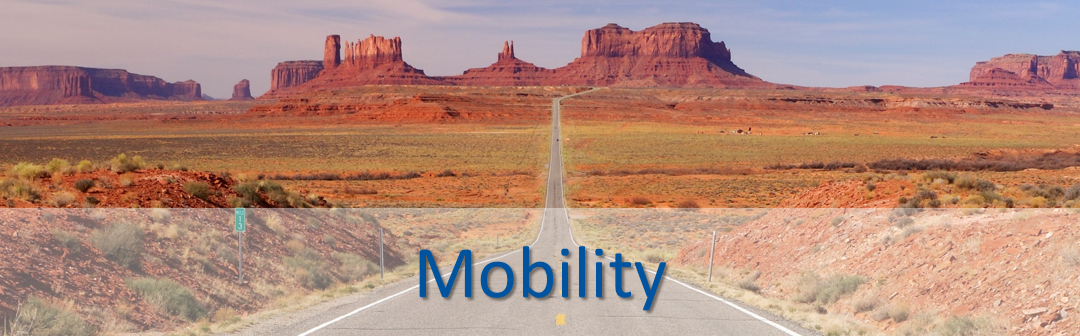 Mobility_101