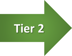 Tier 2-1
