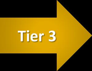 Tier 3-1
