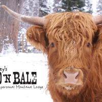 Bailey's Bed 'n Bale in Western Montana.