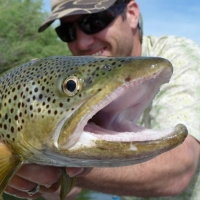 Great Northern Fly Fishing Guides in Western Montana.