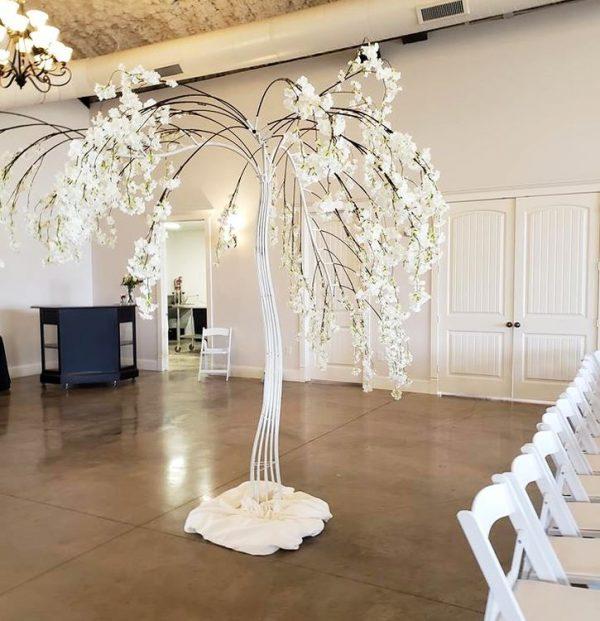 blossom-willow-tree-rental-texas