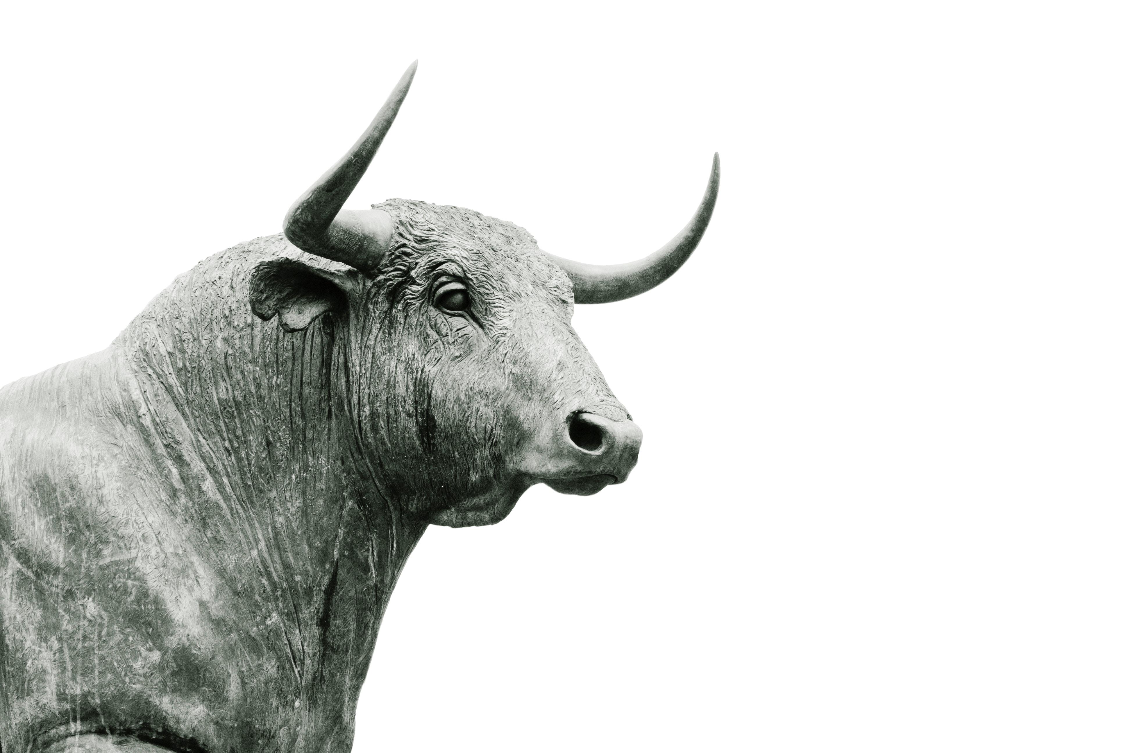 10 Behavioral Signs A Taurus Man Secretly Likes You