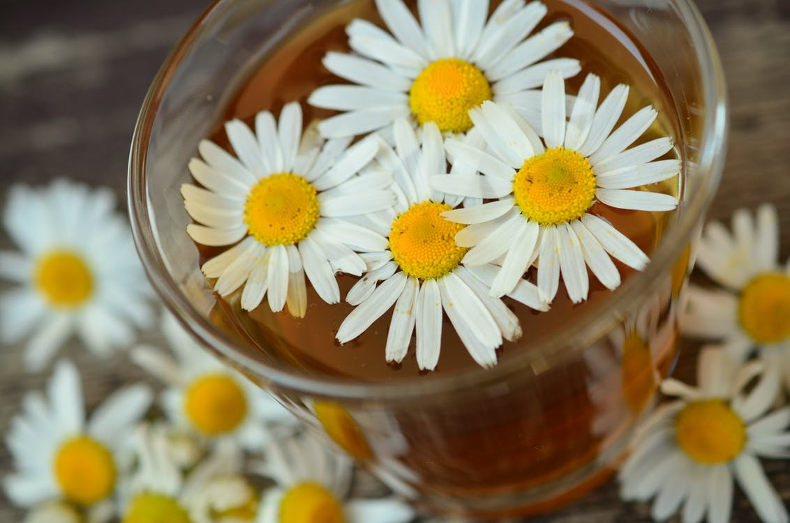 The use of Chamomile essential oil in our everyday life