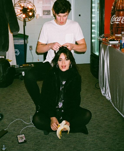 Camila Cabello and Shawn Medes: Their Dating Story