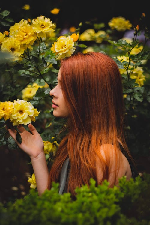 12 Natural Around The World Herbs For Hair Growth