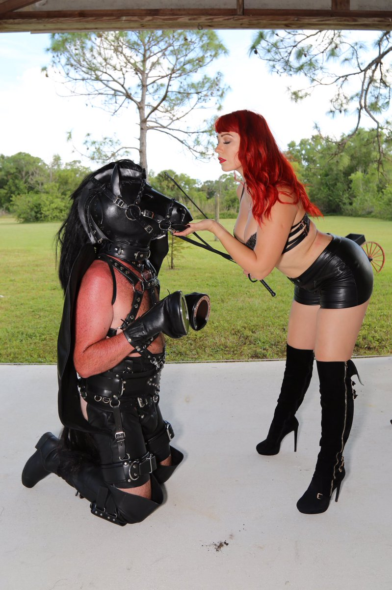 Explaining Pony Play, a BDSM Fetish on being a Horse