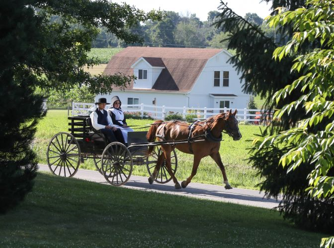 Amish Romance 101: Why You Should Start For Beginners