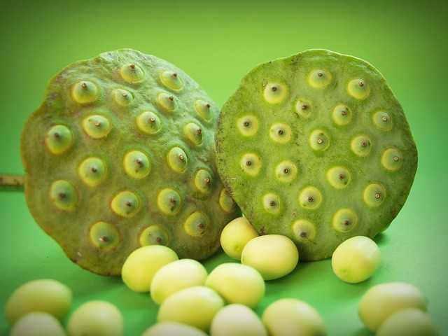 Hate How This Looks? You May Have Trypophobia