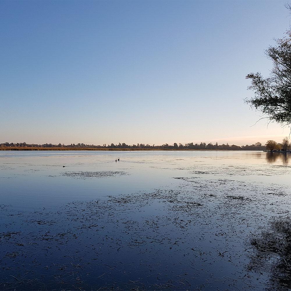Werribee Wetlands