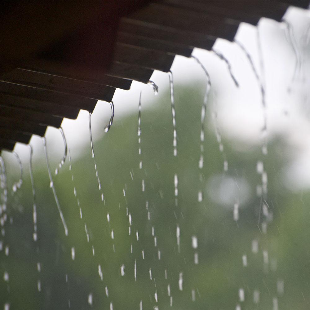 Tin Shed Rain