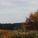 Fall Scenic View