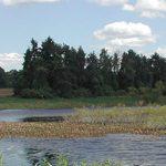 Summer River