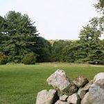 Summer Rock Wall