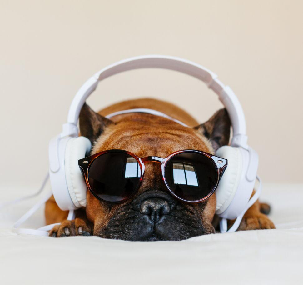 35 Funny Music Puns