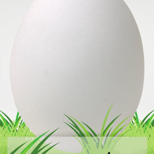 Spring Egg Schoolwide Art Activity