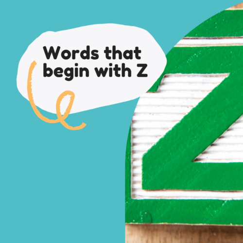 Words that begin with Z