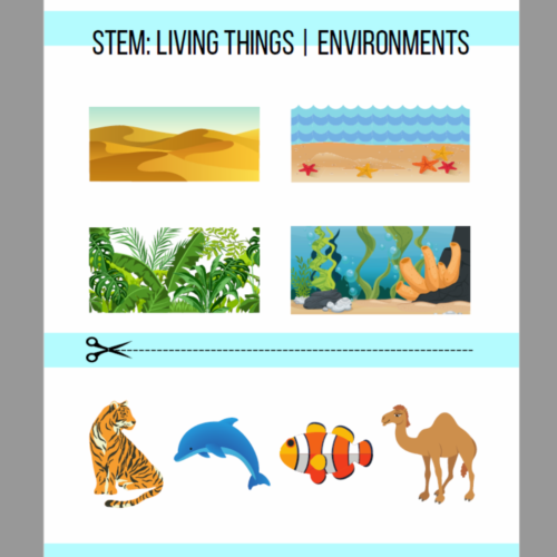 STEM- Living Things - Environments