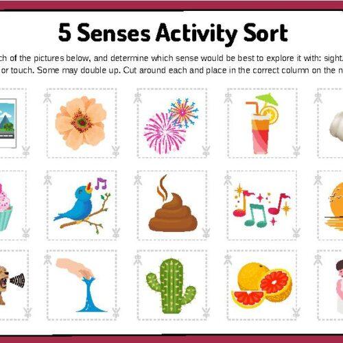 5 Senses Activity Sort