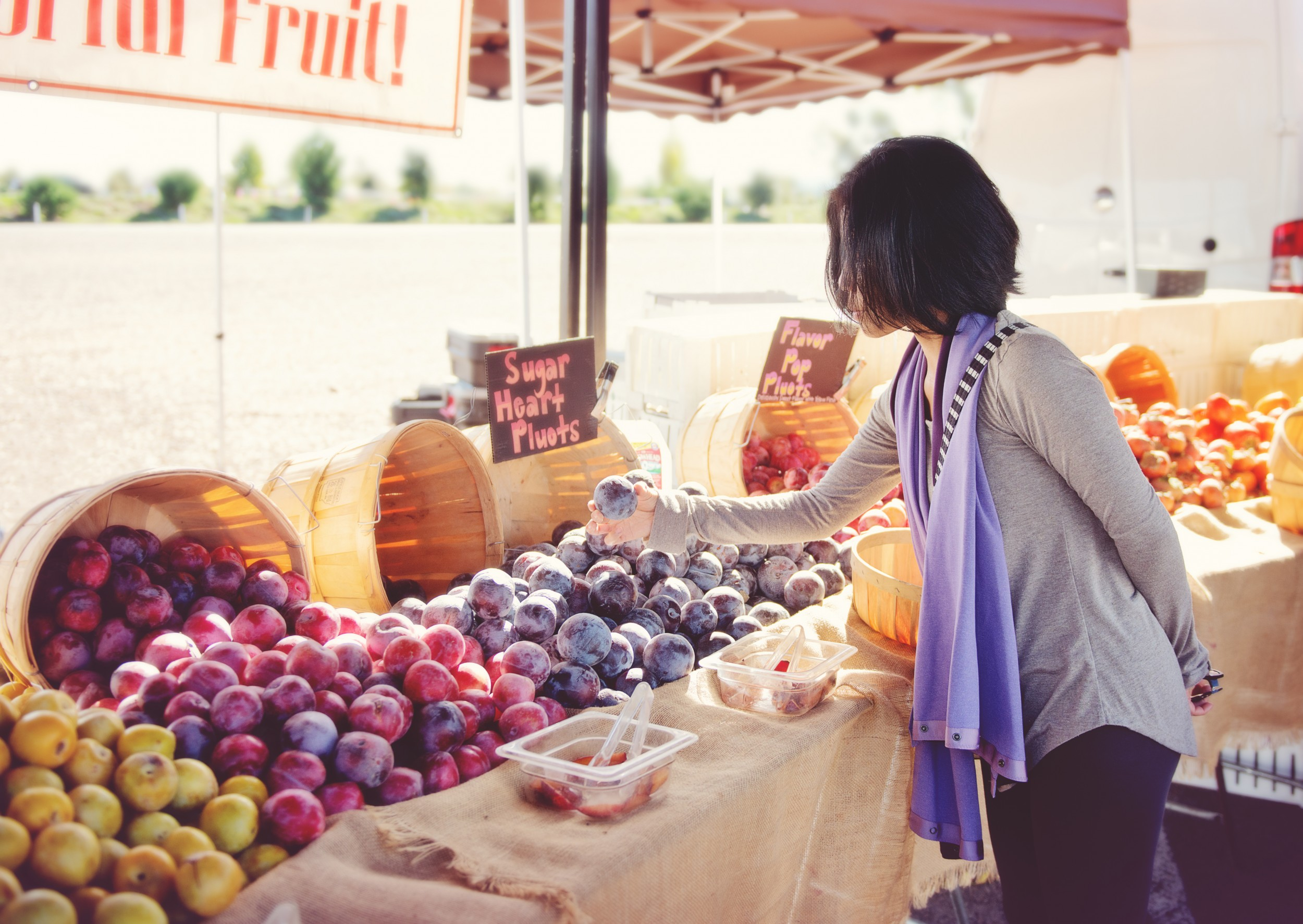 Wolf Point Farmers Market | Missouri River Country