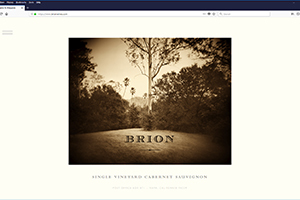Chs 01 Brion Website 2017 Home Web