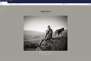 Chs 05 Brion Website 2017 Brion Wise Web