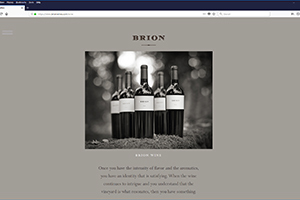 Chs 06 Brion Website 2017 Wine Web