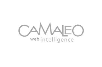 Camaleo Logo