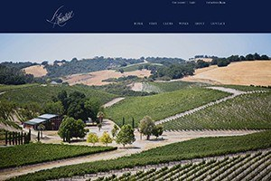 Vin65 Certified Designers Clever Concepts L Aventure Winery