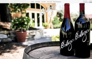 Vinvibe Caliza Winery  Homepage