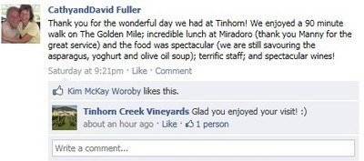 A Positive Review of the Experience at Tinhorn Creek Vineyards
