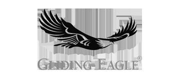 Gliding Eagle
