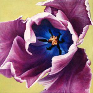 """Tulipa  16 x 16"""""""