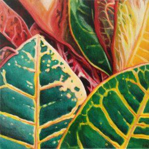 "Croton Candy  10 x 10"""