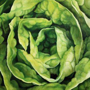 """Lettuce  16 x 16"""""""