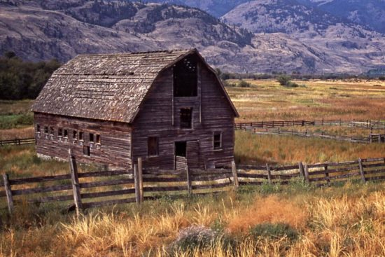 This old barn in the meadow, once part of a rancher's dream, now stands forlorn & forgotten.