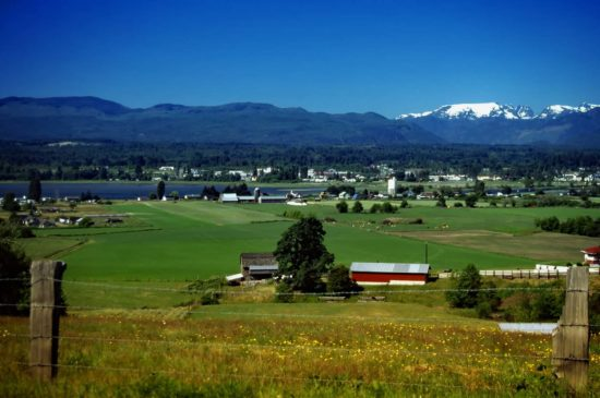 This peaceful, fertile estuary known as the Comox Valley, still enriches both the economy and the scenery today as it did thirty years ago